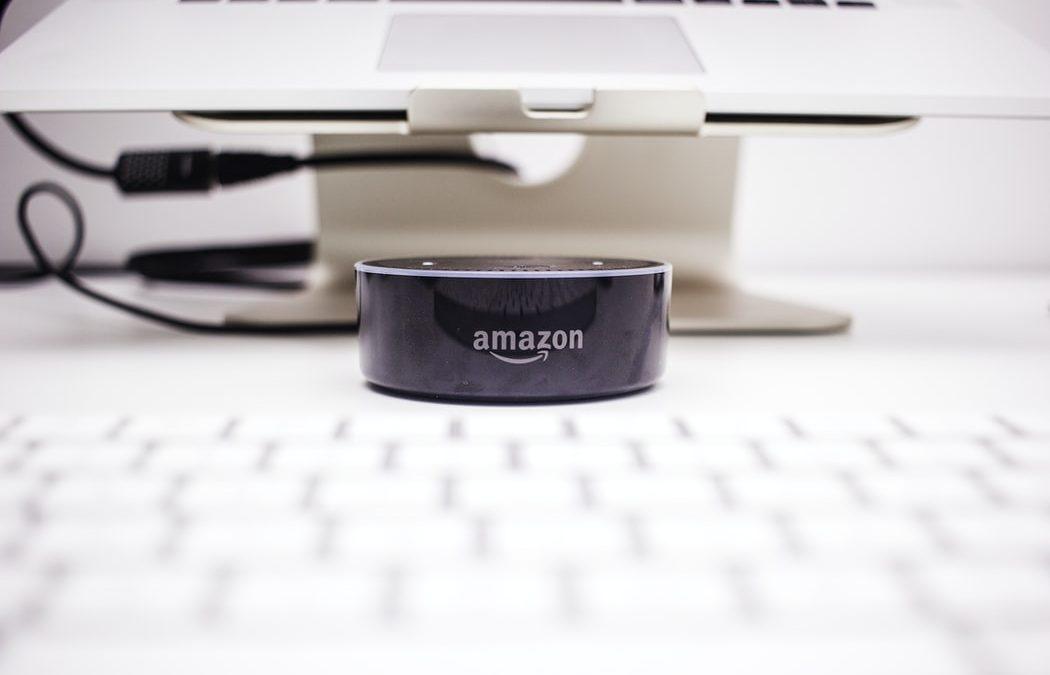 Amazon zaslužek